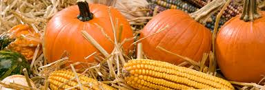 Pumpkin Farms In Nj by Creamy Acres Farm In Mullica Hill Nj Local Coupons October 22 2017