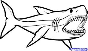 Pin Drawn Shark Coloring Page 5