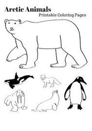 Pin Antarctica Clipart Arctica 14