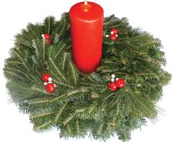 Christmas Tree Species For by Carolina Fraser Fir Company Fraser Fir Christmas Trees Wreaths