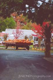 Pumpkin Patch Illinois Chicago by 154 Best Dupage County Il Images On Pinterest