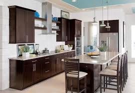 Modern Kitchen Cabinets Las Vegas