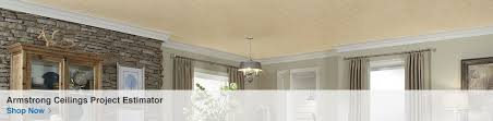 Certainteed Ceiling Tile Bet 197 by Shop Ceilings At Lowes Com