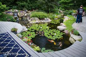 Aquascape Patio Pond 40 by Water Gardens Water Features Backyard Ponds By Aquascape