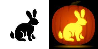 Rainbow Dash Pumpkin Stencil by Rabbit Pumpkin Carving Stencil Free Pdf Pattern To Download And