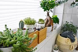 licht für den jungle kleines badezimmer makeover mit