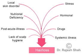 excessive hair shedding causes hair loss causes scalp carelessness skin disorders nutritional