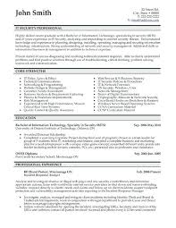 Professional Format For Resumes Sample Information Security Resume Objective