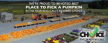 Best Pumpkin Patch Hampton Roads by Grim U0027s Orchard Pick Your Own Family Farm Breinigsville Pa