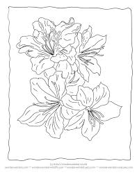 Flower Coloring Sheets Lilyfree Printable Pages Free Bouquet