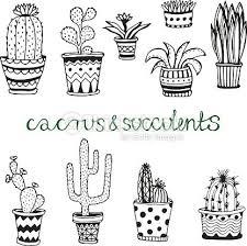 les 25 meilleures idées de la catégorie dessin cactus sur