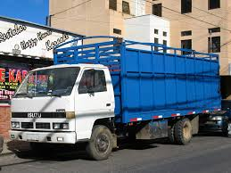 We Will Transport It Hauling Isuzu NPR Trucks | We Will Transport It