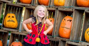 Dorney Park Halloween Haunt Jobs by Sally U0027s Costume Contest Great Pumpkin Fest Dorney Park