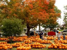 New Milford Pumpkin Festival Ct by 50 Fun New England Fall Travel Ideas For The Budget Minded The