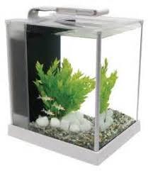 meuble pour aquarium pas cher 15 pantalon bretelle femme 28227