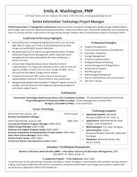 Federal Government Resume Example And Template