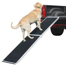 Lucky Dog Extra Wide Folding Dog Ramp | Discount Ramps Inexpensive Doggie Ramp With Pictures Best Dog Steps And Ramps Reviews Top Care Dogs Photos For Pickup Trucks Stairs Petgear Tri Fold Reflective Suv Petsafe Deluxe Telescoping Pet Youtube The Writers Fun On The Gosolvit And Side Door Dogramps Steps Junk Mail For Cars Beds Fniture Petco Lucky Alinum Folding Discount Gear Trifolding Portable 70 Walmartcom 5 More Black Widow Trifold Extrawide