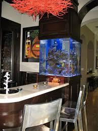 počet nápadov na tému deco aquarium pas cher na pintereste 17