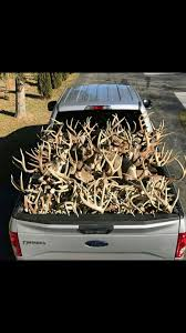 Now That's A Truck Load! #deer #antlers #truckload #truck #outdoors ... 3pcsset Christmas Antlers Decoration For Car Truck Costume Photos Opening Day Of Wyomings Shed Hunting Season Outdoor Life Preserving Lvet Antlers On Deer Outdoors Aberdeennewscom Elk Tracks Galore Records Set At Boy Scout Antler Auction Headed To The Lower 48 Pic Taken In Yukon Canada Youtube Lumiparty Reindeer Suv Van And Amazoncom Mystic Industries Original Vehicle With Jumbo Redbrown Auto