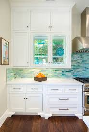 clear cabinets design by lunada bay tile