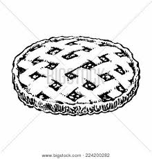 Apple Pie Sketch Icon Homemade Cake Dessert Hand Drawn Top View Vintage Vector