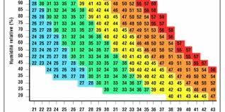 taux humidit chambre quel est le bon taux dhumidit dune chambre budgetmag taux d taux d