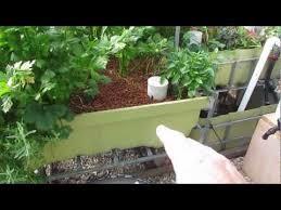 Aquaponic System Layout Tour YouTube Soil Garden Pinterest
