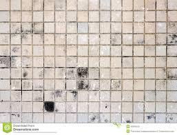 Brown Floor Tile Dirty