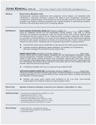 Sample Of Nursing Resume Popular Student Summary Examples Nice Resumes 0d Wallpapers