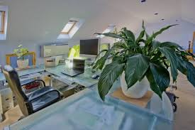 Best Plant For Your Bathroom by Wilmington Re Bath Bathroom Plants What Are The Best Plants For