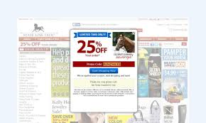 State Line Tack 20 Off Coupon - Coupon Codes For Best Buy 10 Off