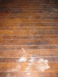 Can You Steam Clean Old Hardwood Floors by Best Old Wood Floor Cleaning Gallery Flooring U0026 Area Rugs Home