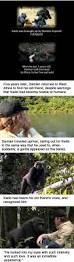 Toynbee Tiles Documentary Netflix by The 25 Best Dead Gorilla Ideas On Pinterest Gorilla Wallpaper