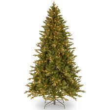 Christmas Tree Species by Buy Christmas Tree Australia Christmas Lights Decoration