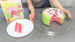 test wassermelone backmischung dr oetker kuchen