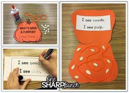 Pumpkin Pumpkin By Jeanne Titherington by Pumpkin Investigation Activities One Sharp Bunch