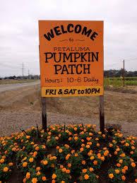Pumpkin Patch Petaluma Adobe by Tolay Fall Festival Petaluma Pumpkin Patch A 30 Year
