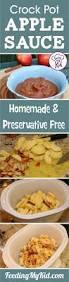 Homemade Christmas Tree Preservative Recipe by Crockpot Applesauce Homemade And Preservative Free