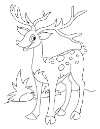 Coloring Pages Of Deer Page Appealing Printable Model