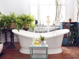 Good Plants For Windowless Bathroom by Houseplants That Thrive In Your Bathroom The Joy Of Plants