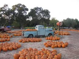 Bishop Pumpkin Farm Hours by The Pumpkin Farm Harvest U0026 Family Fun For The Whole Family