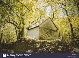 100 House In Forest Little House In Forest Stock Photo 181239469 Alamy