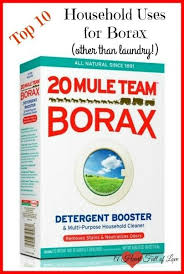 The 25 best Uses for borax ideas on Pinterest