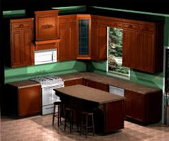 Amazing Small Kitchen Design Layout 10x10 Image