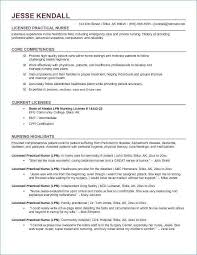 Computer Skills For Resume Beautiful To Put On Fresh Examples Resumes