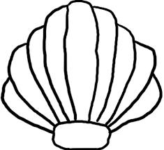 Seashell sea shell clip art image 2
