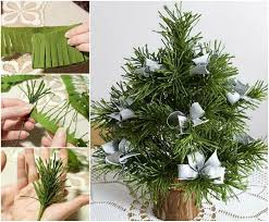 Best Smelling Christmas Tree Types by Best 25 Types Of Christmas Trees Ideas On Pinterest Christmas