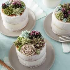 Wilton Stunning Succulent Cakes