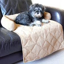 Sofa Bed For Dogs 56 with Sofa Bed For Dogs