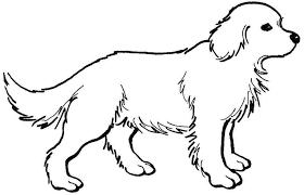 Nice Dog Animal Coloring Pages Preschool Dogs Printable 44